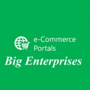 Big Enterprises Ecommerce