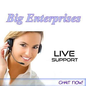 Big Enterprises live-chat-support