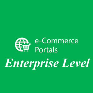 Enterprise Level Ecommerce